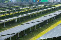 福岡市 福岡地区 メガソーラー・太陽光発電施設の草刈り・除草