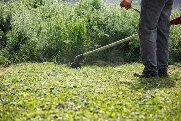 草刈り 除草作業