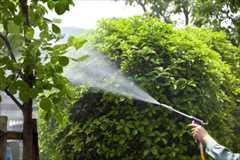 福岡市 福岡地区 一戸建て 一軒家  植木・庭木の消毒剤散布