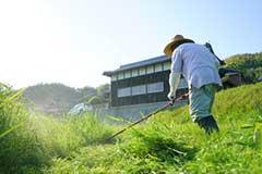 福岡市 別荘・会社の敷地、管理地等の定期的な草刈り