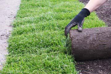 芝剥ぎ作業